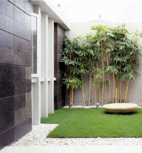 taman minimalis sederhanA | taman minimalis batu alam | taman minimalis samping rumah | taman minimalis depan rumah  width=