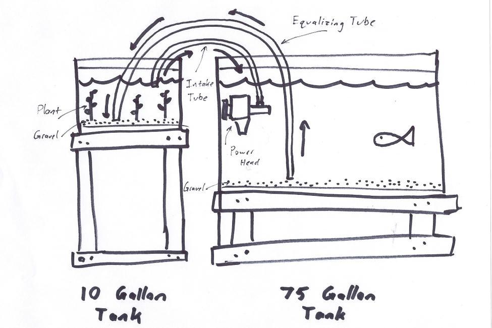 basic aquaponic system diagram  basic  free engine image