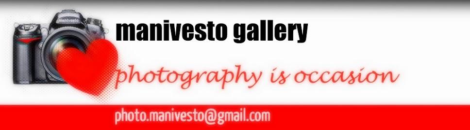 manivesto gallery