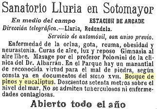 Más eucaliptos,  más   coníferas. Consecuencias de la sed de beneficio$ en la húmeda Galicia. El sector forestal. 1912_Anuncio+Sanatorio+Lluria+%2528Soutomaior%2529_Bosque+pinos+eucaliptos