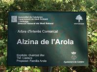 Placa identificativa de l'Alzina de l'Erola
