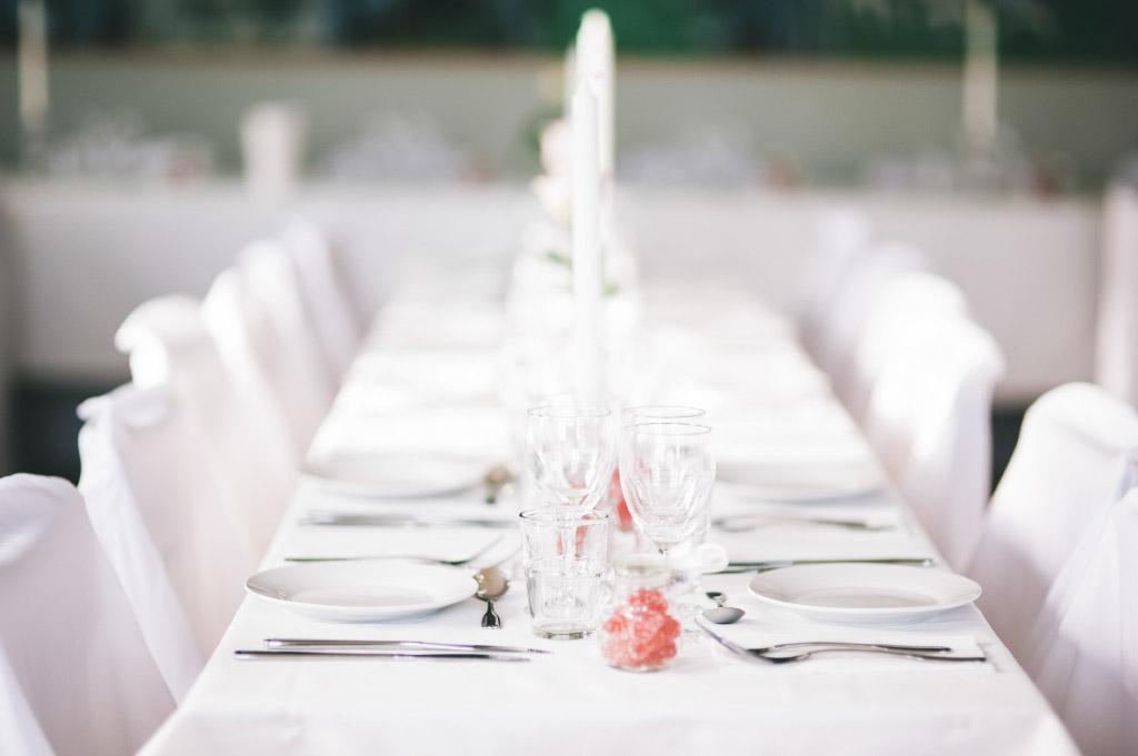 Bröllopsfest i Rog