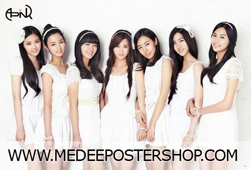 A-PINK Poster 2014