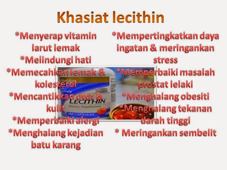 Khasiat dan kebaikan lecithin