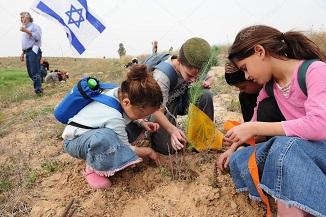 ✡ Tu Bishvat, Anul Nou al Pomilor, o sărbătoare evreiască din perioada celui de al Doilea Templu