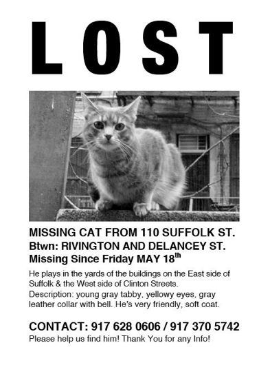 benny has been missing since last friday his owners are really worried all the info is on the above flyer