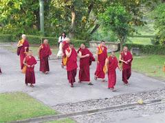 Peregrinação com Lama Gangchen em Borobudur - Indonésia