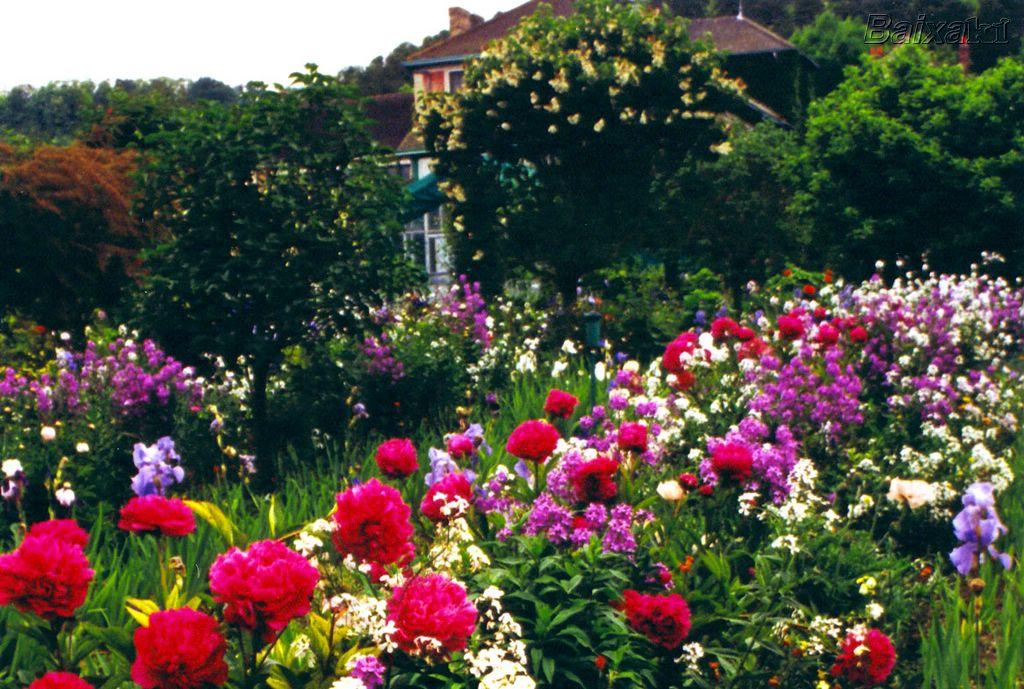 Versículos para hoje Entre as flores do jardim