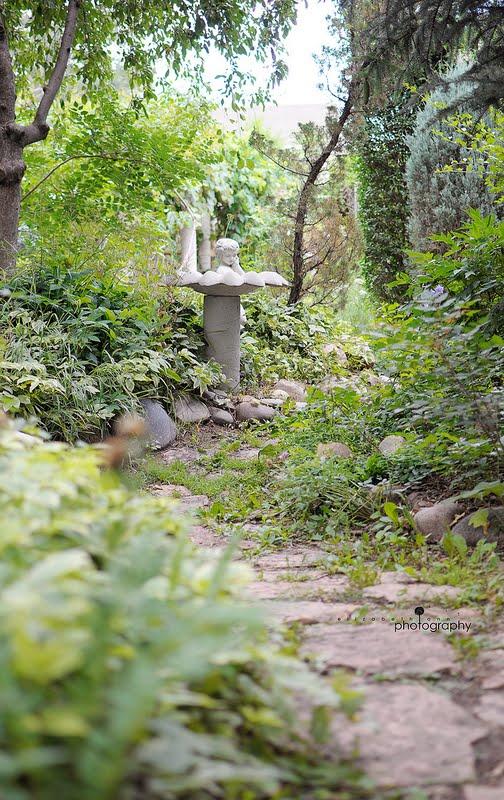 Elizabeth Ann Photography Colorado Springs Wedding Photographer Secret Garden Mike Laura