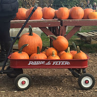 Pumpkin Patch Red Flyer New England Fall Events