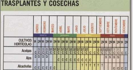 Mi huerto ecol gico calendario de cultivos duraci n y Rotaciones de cultivos ecologicos