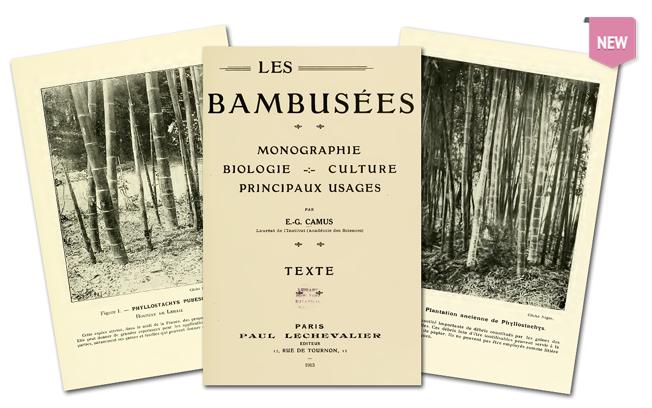 biopesticides research paper