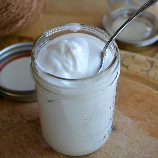 How to make Homemade Coconut Milk Yogurt - The View from Great Island