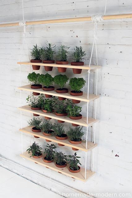 DIY - rośliny w kuchni