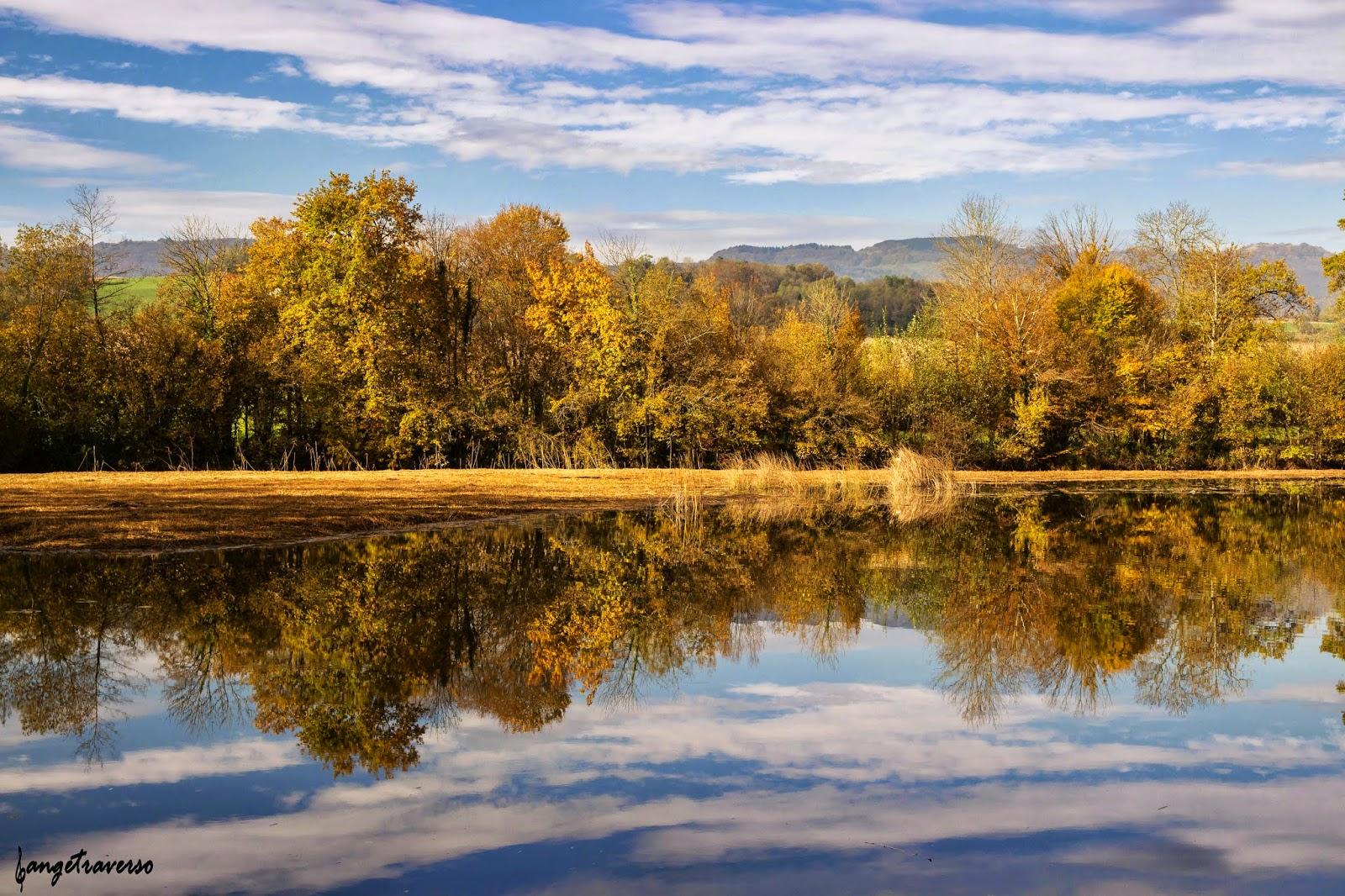Couleurs d'automne à l'étang de Crosagny, réserve naturelle en Savoie