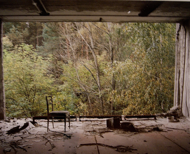 from Camera Atomica Exhibit at Art Gallery of Ontario in Toronto, AGO, Nuclear, Weapons, Photography, Meltdown, Photos, Disaster, World War Two, Canada, The Purple Scarf, Culture, Art, Artmatters, Exhibition, view of forest from dental hospital, pripyat, david mcmillan
