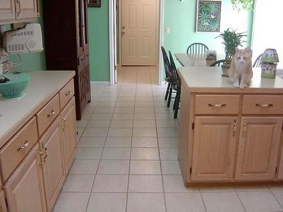 lantai dapur anti air