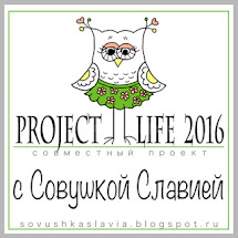 Project Life-2016