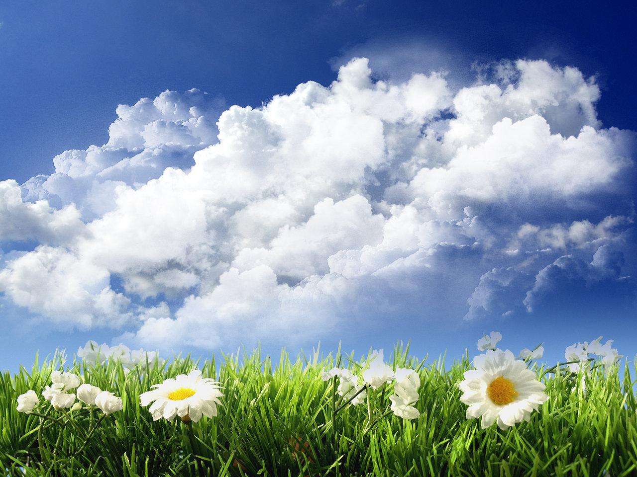 http://4.bp.blogspot.com/-qI49AjX-_DI/TbLiWwFd5JI/AAAAAAAABcA/2_FPmV4y9Rs/s1600/sky-and-flowers.jpg