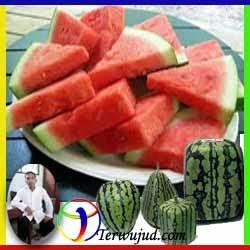Semangka-7Top Ranking