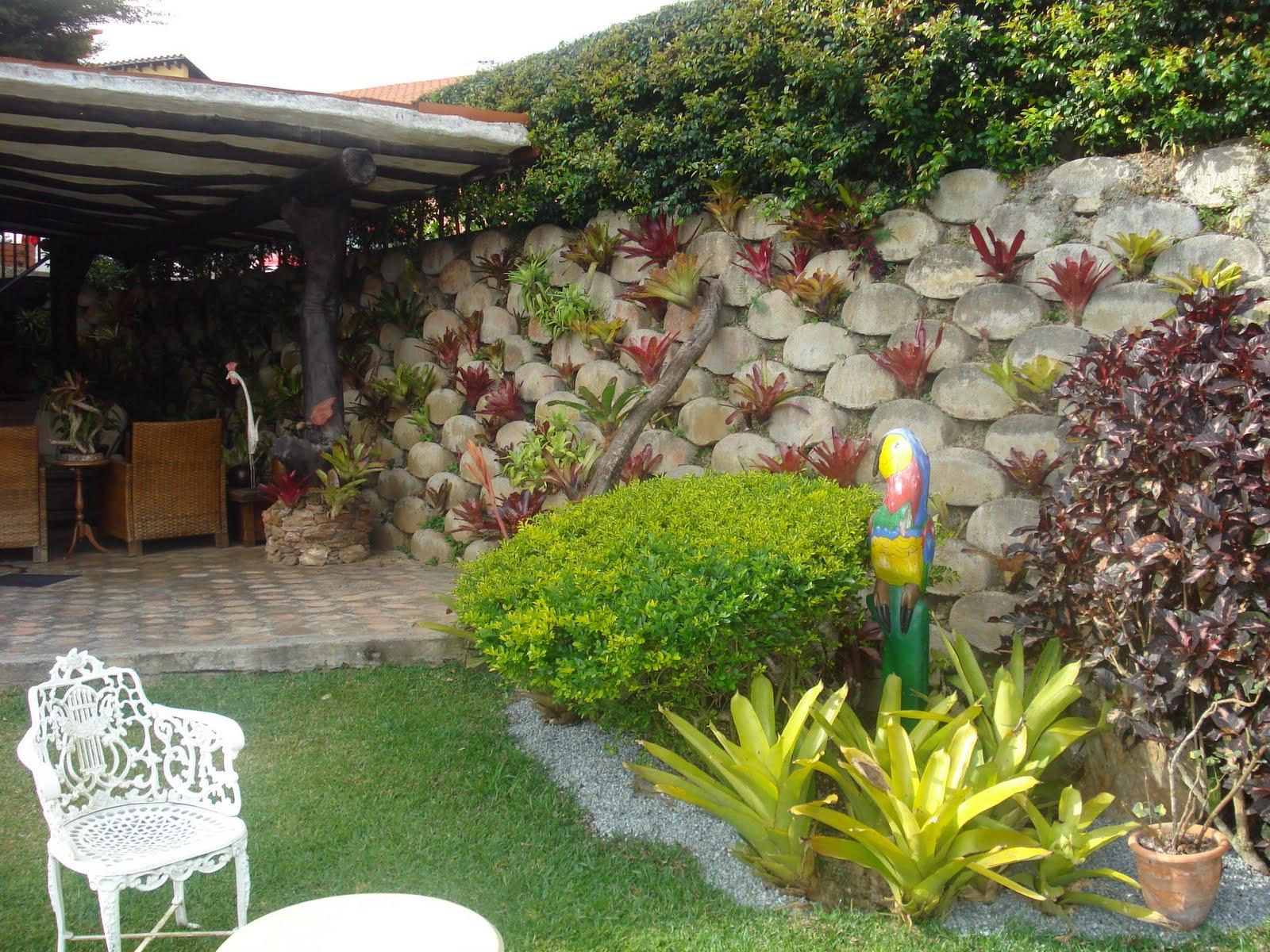 Para la tapia de mi casa jardines terrazas patios y for Paisajismo patios