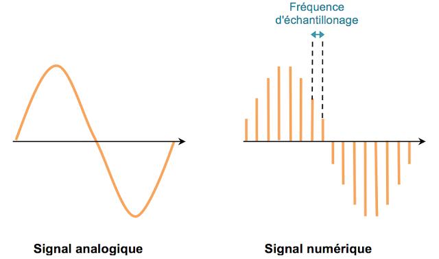 Signal numérique ou analogique guitare électrique