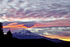 Shasta Sunrise