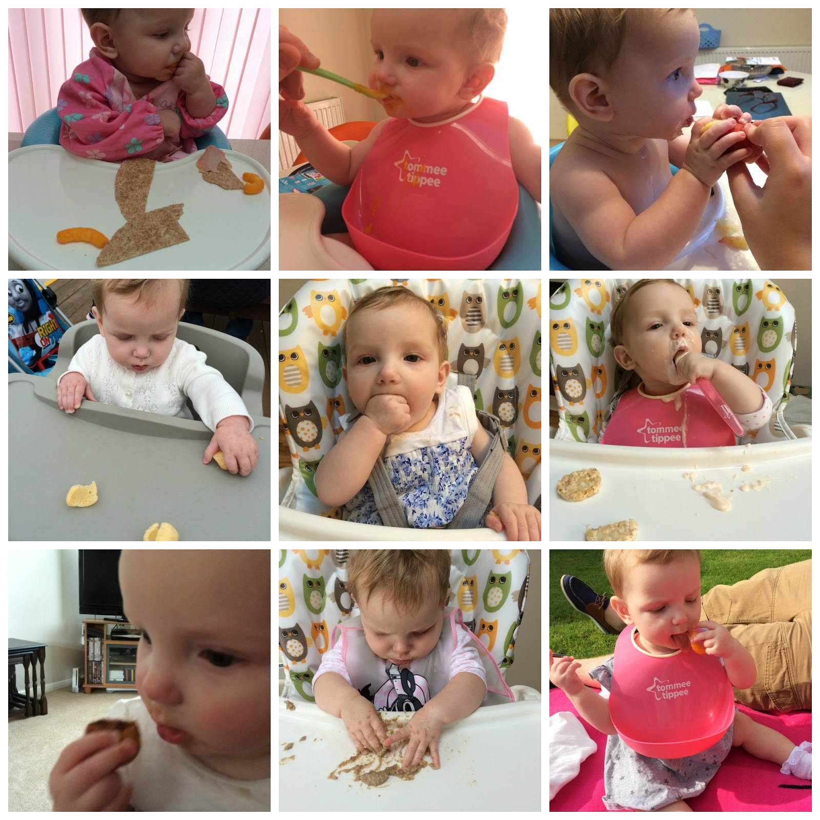 Our Weaning Journey