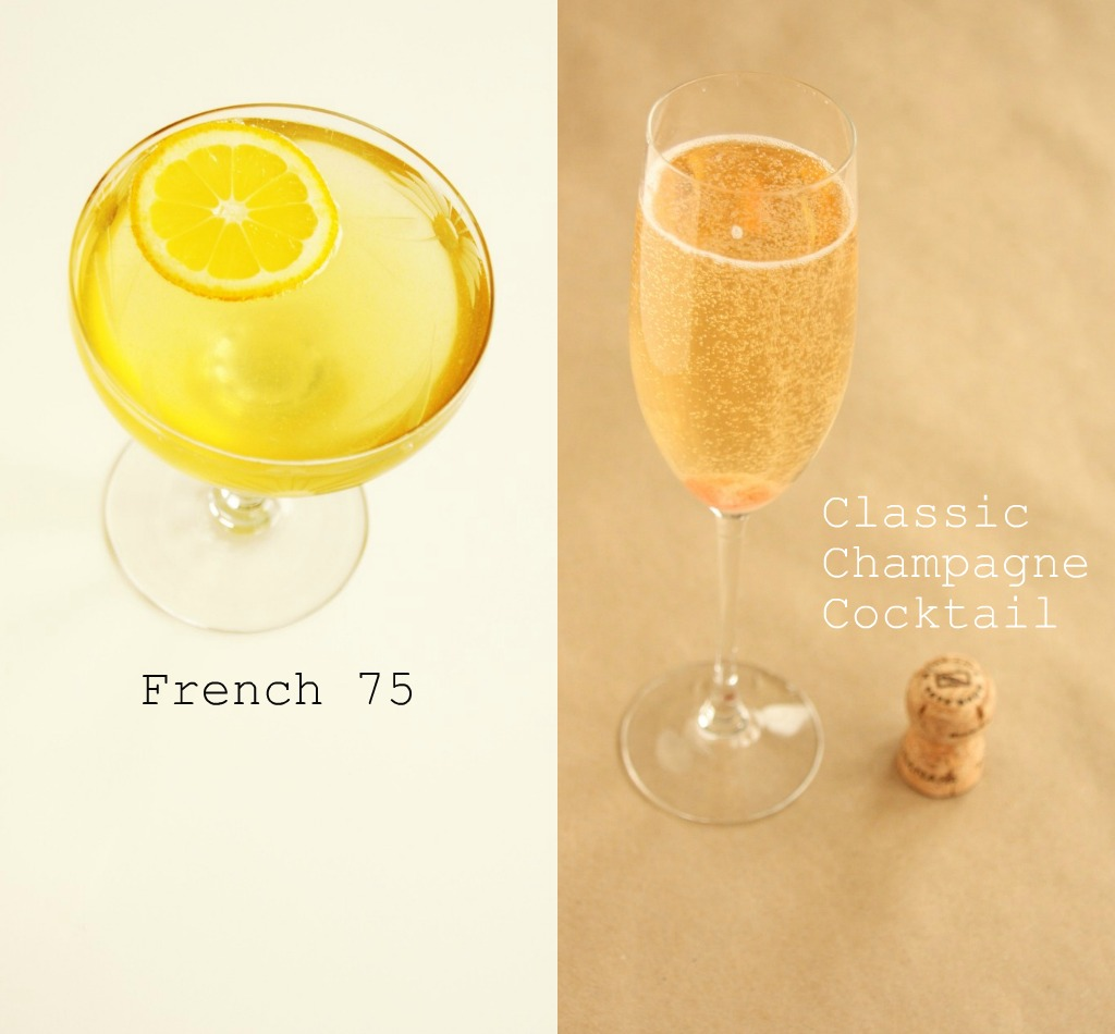 Champagne cocktail showdown: coupe v. flute - Pink Moon Daily