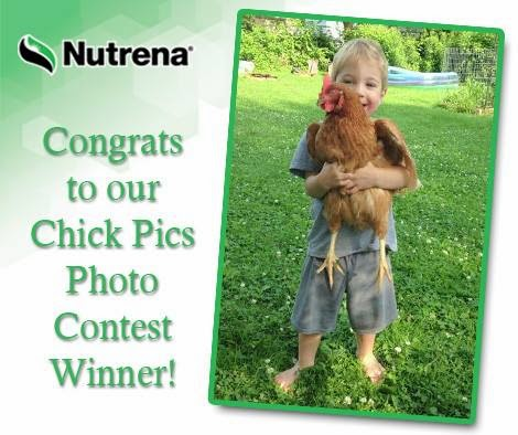 We won the 2015 Nutrena Chick Pics Photo Contest!!