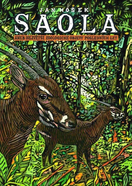 Kniha Saola aneb...