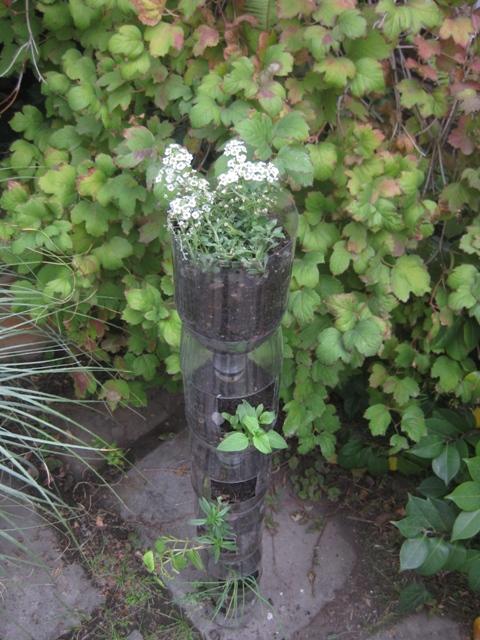 Revista energ a jardines c mo hacer un huerto vertical for Como hacer un jardin vertical casero y economico