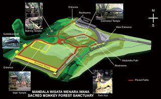 Monkey Forest Map