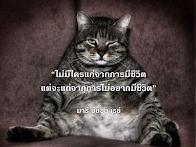 มารี บียอน เรย์