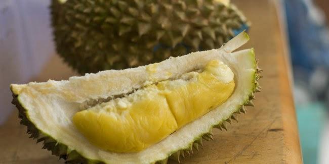 raja buah durian
