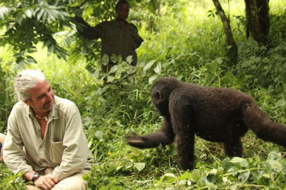 In my element, Bwindi, Uganda 2013