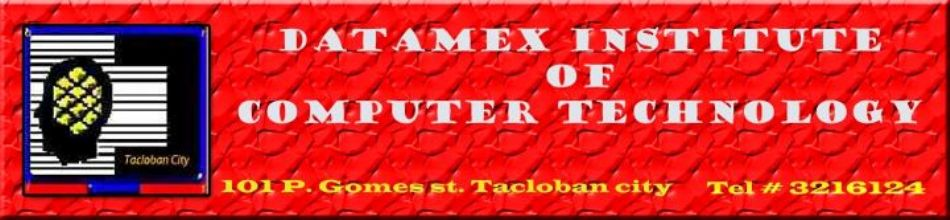 Datamex Tacloban
