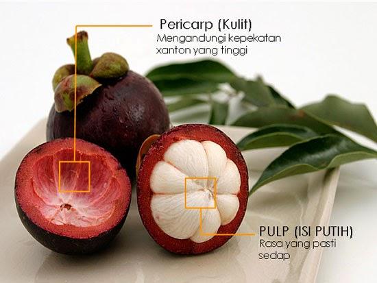 Khasiat buah manggis dan Manfaat kulit manggis