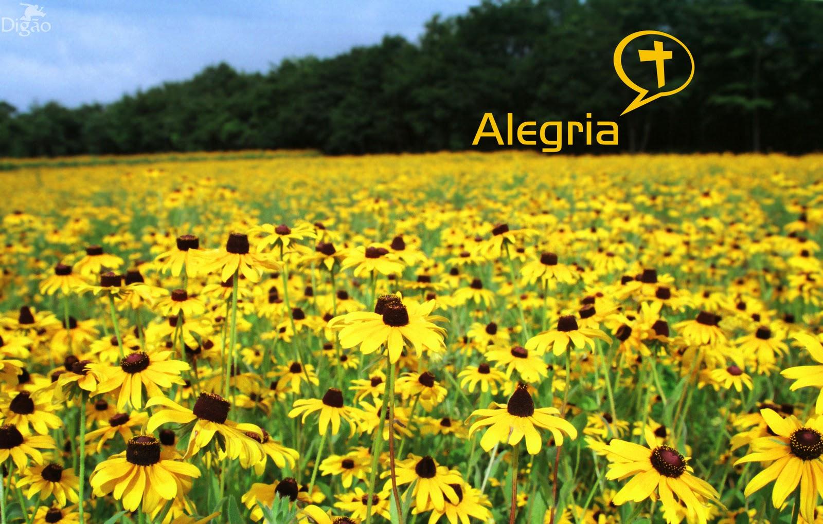 http://4.bp.blogspot.com/-qKPdcsI6r1c/Tnn1k4nn8vI/AAAAAAAAC34/7Y36i4P969E/s1600/alegria.jpg