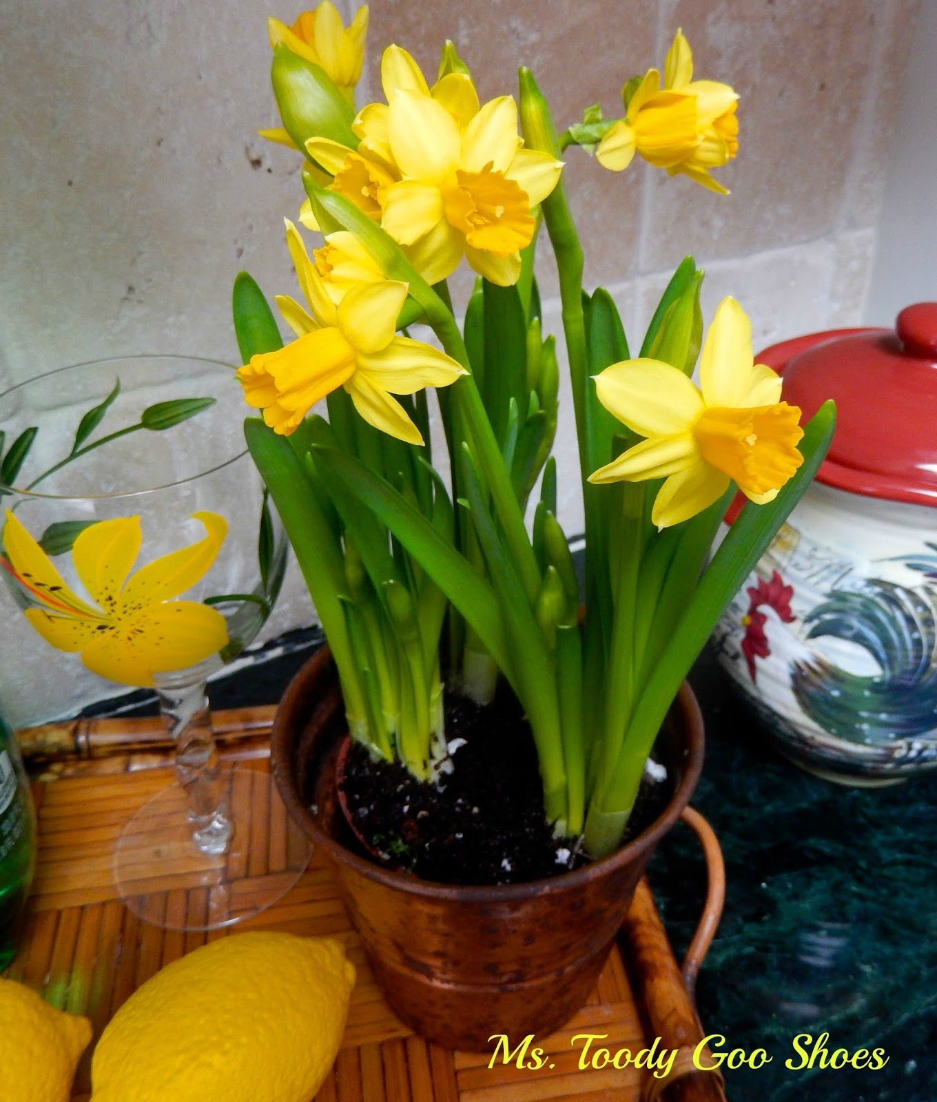 Daffodils in the Kitchen --- by Ms. Toody Goo Shoes