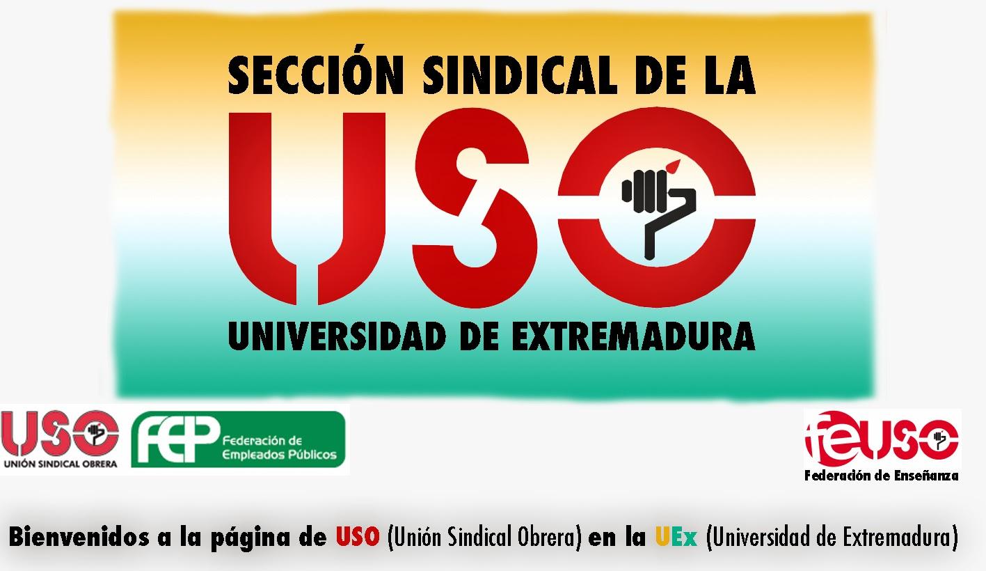 SECCIÓN UNIVERSIDAD