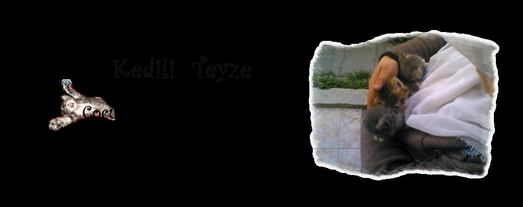 Kedili Teyze