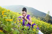 Hari priya photo shoot among yellow folwers-thumbnail-17