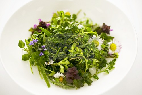 on each side or grill wild herb salad with vinaigrette
