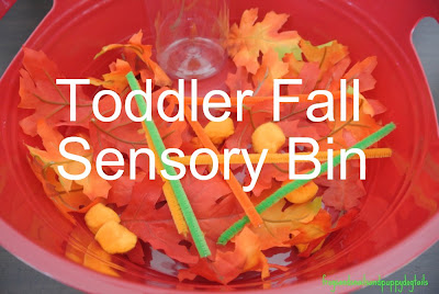 Fall Sensory Bin-toddler