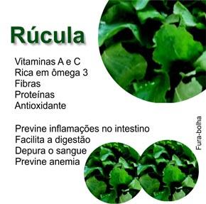 Vitaminas A e C rúcula