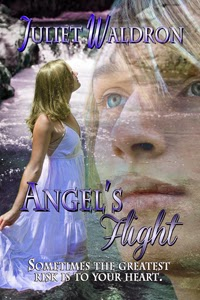 http://books-we-love-online-ebookstore.myshopify.com/products/angels-flight-by-juliet-waldron