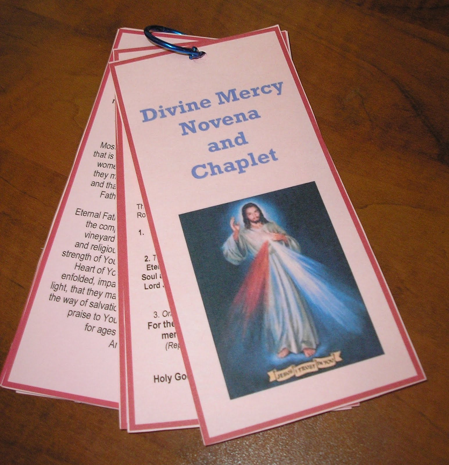 graphic relating to Divine Mercy Chaplet Printable referred to as The Diary of a Sower: Divine Mercy Novena and Chaplet