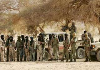 الجزائر تحذر من عواقب نشر قوة عسكرية في مالي