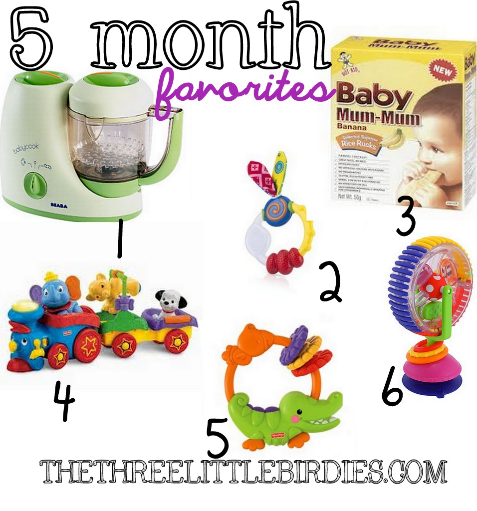 10 Month Baby Food